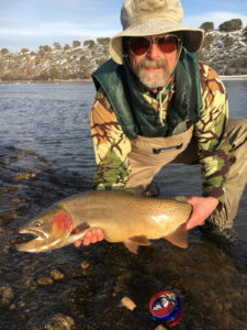 Snake River Cutthroat trout