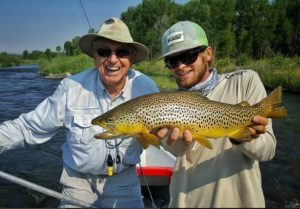 South Fork Brown Trout, Chase Hines