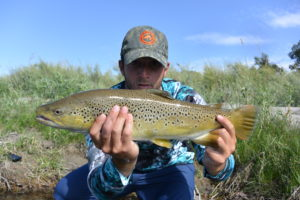 South Fork Brown Trout | Guide Jackson Knoll
