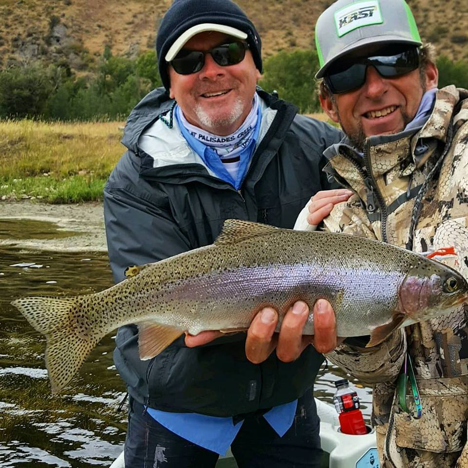 rainbow trout - south fork of the snake river