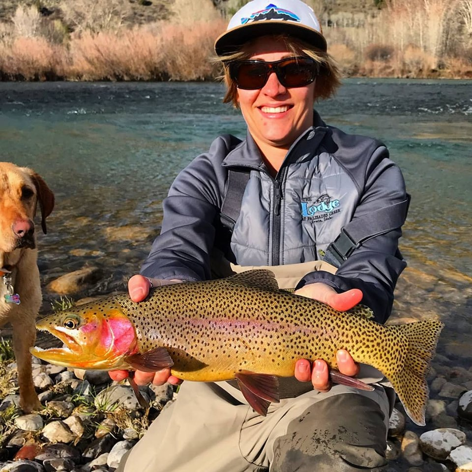 female angler with rainbow trout - south fork of the snake