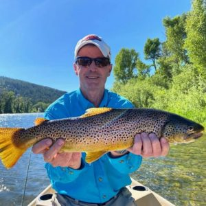 south fork brown trout fly fishing