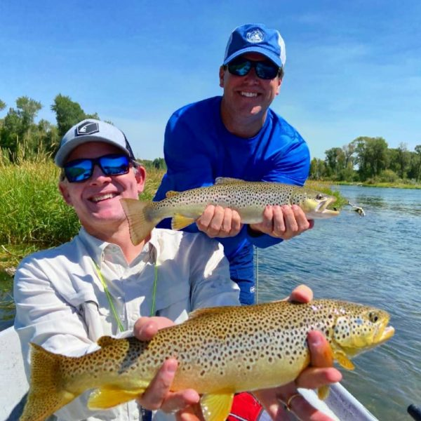 two brown trout with anglers